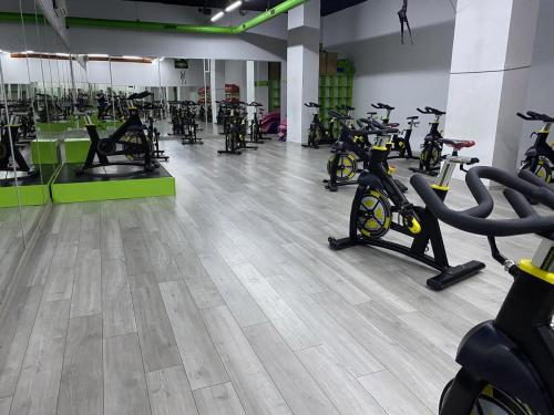 fitlab s